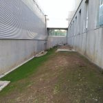 ajardinamiento-espacios-cacti-universidade-vigo