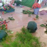 curso-actividades-auxiliares-jardineria