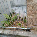 jardin-patio-ingles
